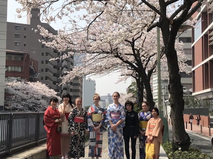浴衣×桜に修学旅行生大興奮でした(^^)